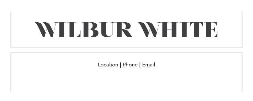 Wilbur White Mini Business Card Template Back
